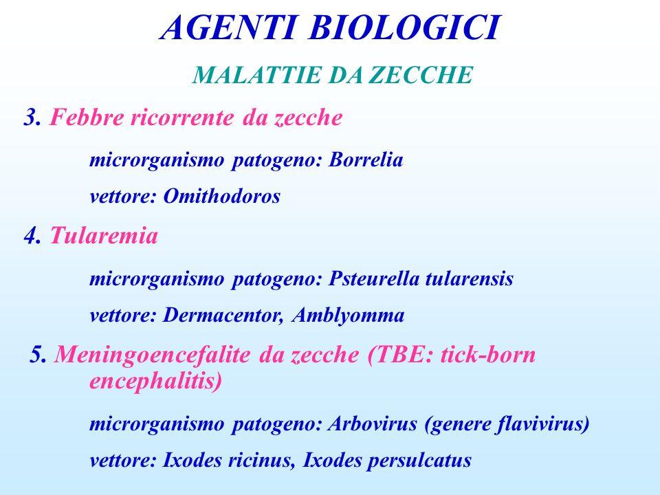 AGENTI BIOLOGICI MALATTIE DA ZECCHE 3. Febbre ricorrente da zecche