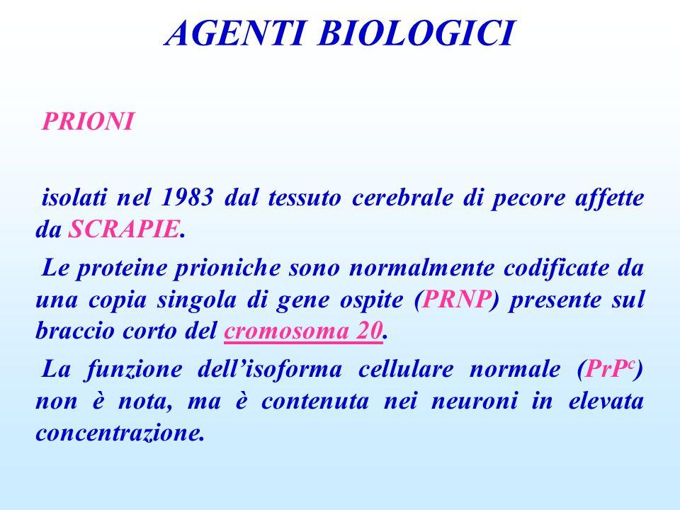 AGENTI BIOLOGICI PRIONI