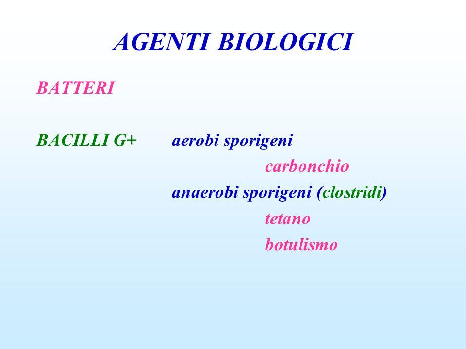 AGENTI BIOLOGICI BATTERI BACILLI G+ aerobi sporigeni
