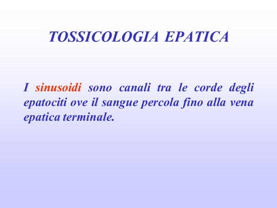 tossicologia epatica27/03/2017. TOSSICOLOGIA EPATICA.