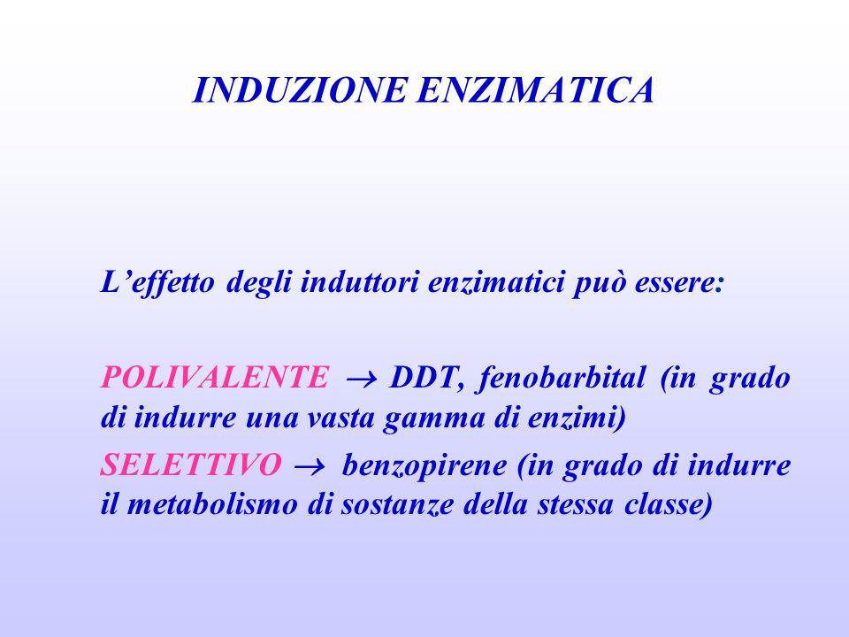 INDUZIONE ENZIMATICA L'effetto degli induttori enzimatici può essere: