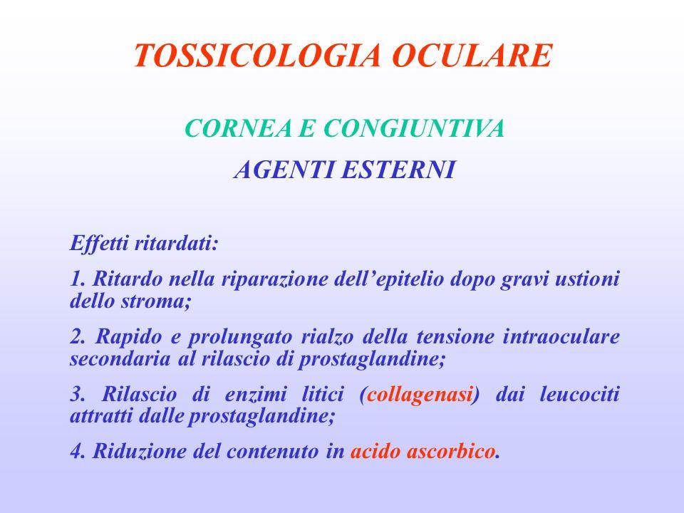 TOSSICOLOGIA OCULARE CORNEA E CONGIUNTIVA AGENTI ESTERNI