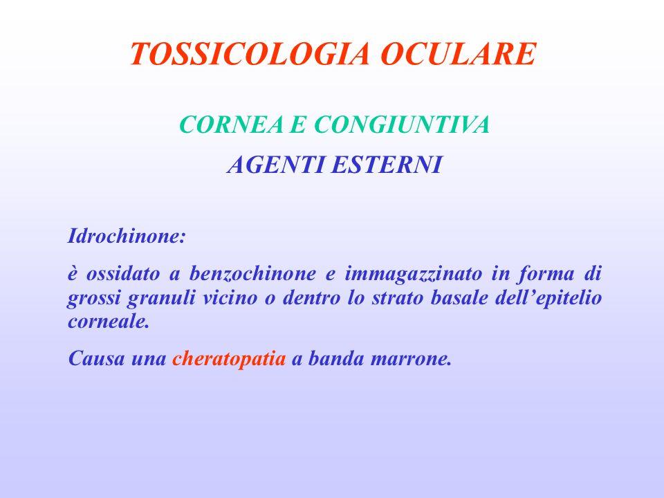 TOSSICOLOGIA OCULARE CORNEA E CONGIUNTIVA AGENTI ESTERNI Idrochinone: