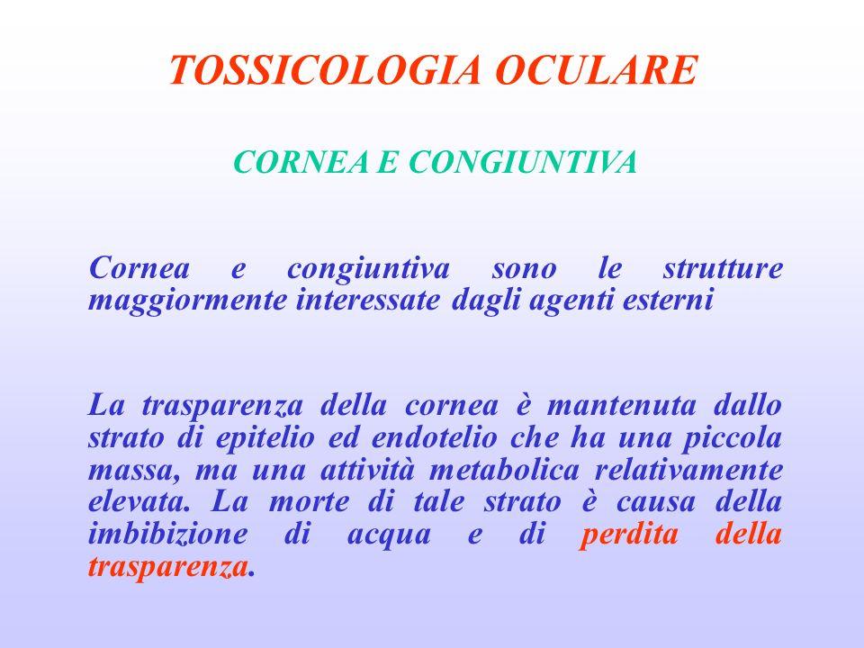 TOSSICOLOGIA OCULARE CORNEA E CONGIUNTIVA