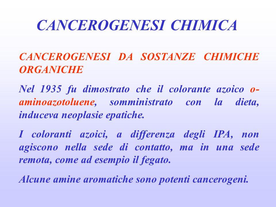 CANCEROGENESI CHIMICA