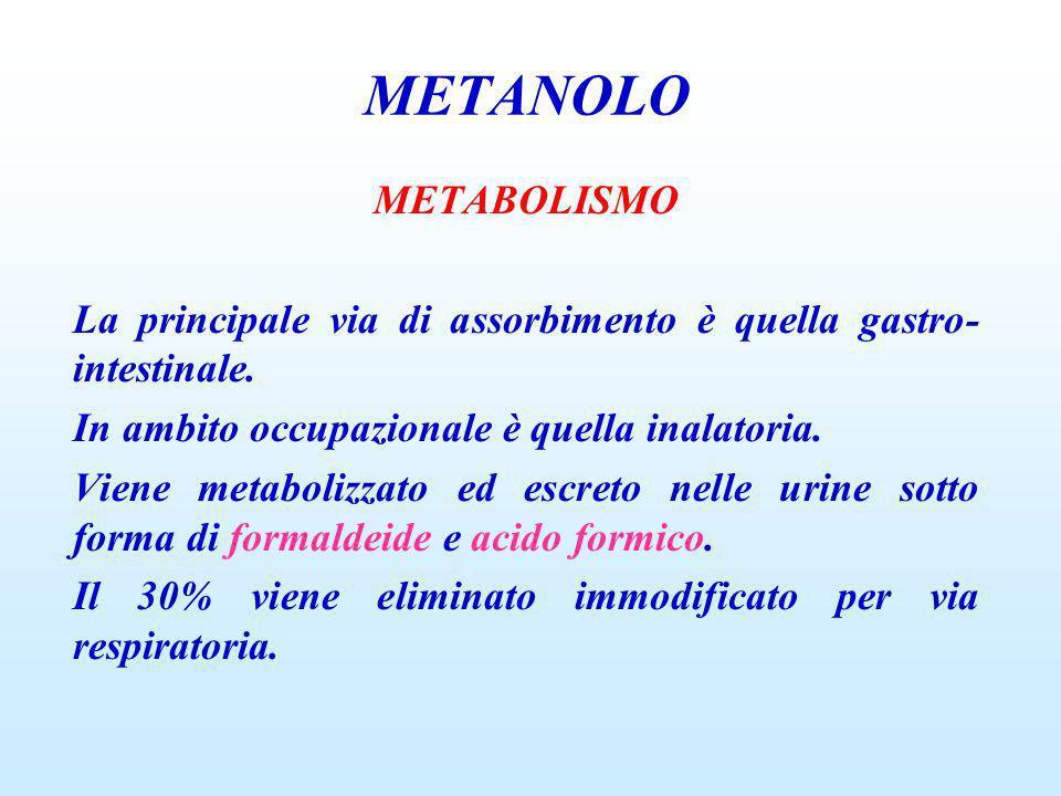 METANOLOMETABOLISMO. La principale via di assorbimento è quella gastro-intestinale. In ambito occupazionale è quella inalatoria.
