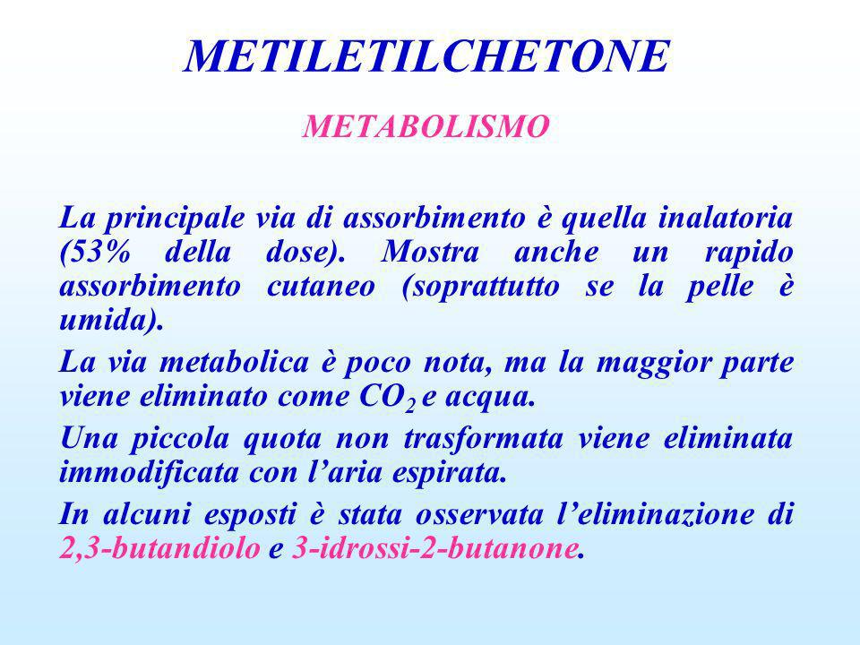 METILETILCHETONE METABOLISMO