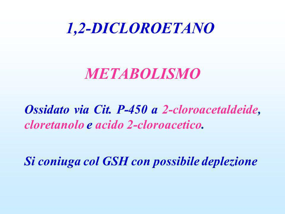 1,2-DICLOROETANO METABOLISMO
