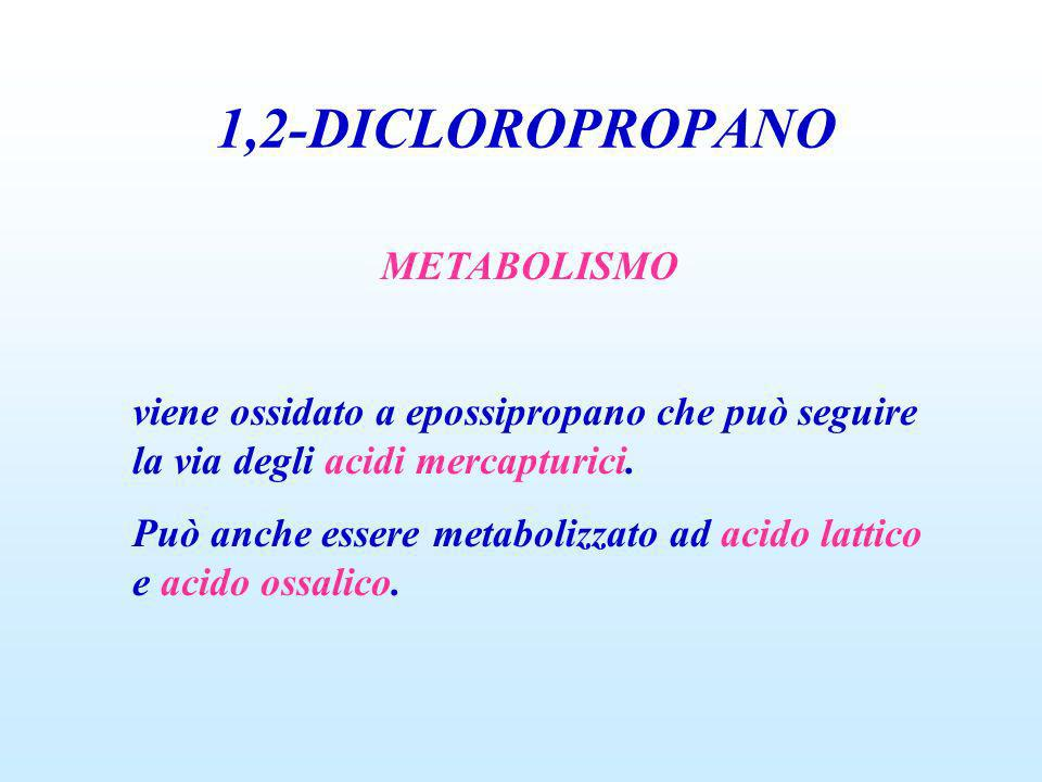 1,2-DICLOROPROPANO METABOLISMO