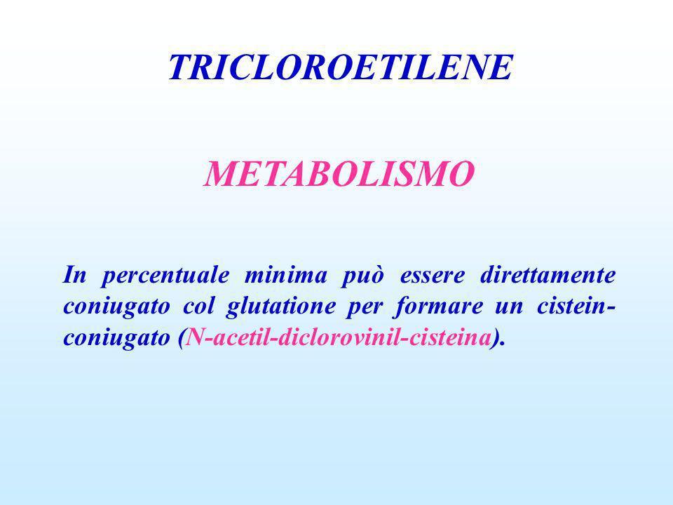 TRICLOROETILENE METABOLISMO