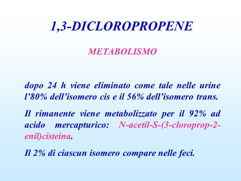 1,3-DICLOROPROPENE METABOLISMO