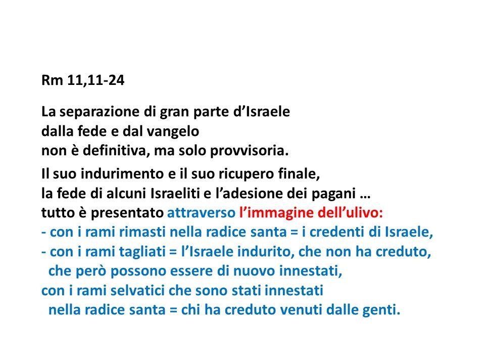 Rm 11,11-24 La separazione di gran parte d'Israele dalla fede e dal vangelo non è definitiva, ma solo provvisoria.