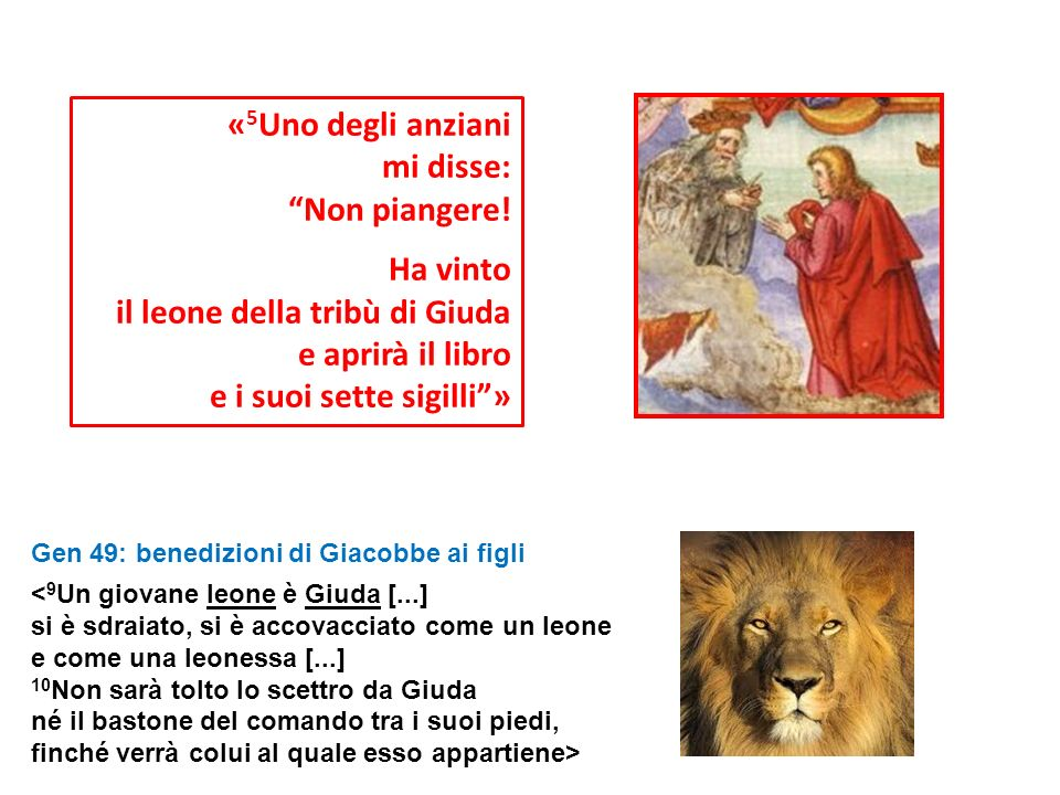 il leone della tribù di Giuda e aprirà il libro
