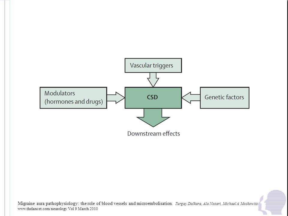 Moskowitz qualche mese fa, basandosi su dati dell' animale, ha ribadito che la CSD riveste un ruolo fondamentale nella genesi della emicrania con aura. La suscettibilità alla CSD è da considerarsi su base genetica, modulata da fattori ormonali (ovarici), da farmaci che sopprimono la CSD e prevengono gli attacchi emicranici. Si conferma il dato che l'innesco della CDS avviene attraverso una ipoperfusione focale.