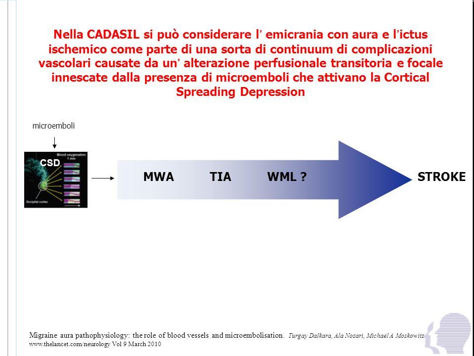 Nella CADASIL si può considerare l' emicrania con aura e l'ictus ischemico come parte di una sorta di continuum di complicazioni vascolari causate da un' alterazione perfusionale transitoria e focale innescate dalla presenza di microemboli che attivano la Cortical Spreading Depression