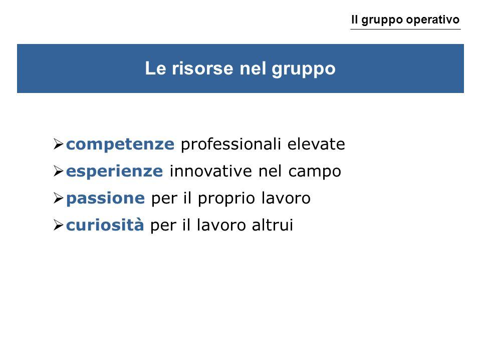 Le risorse nel gruppo competenze professionali elevate