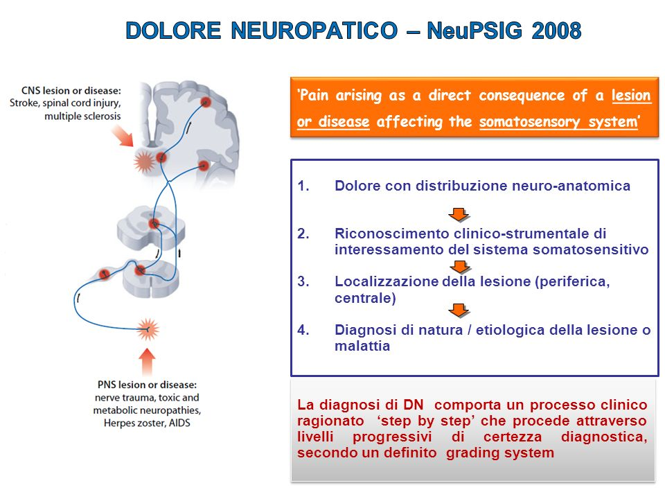 DOLORE NEUROPATICO – NeuPSIG 2008