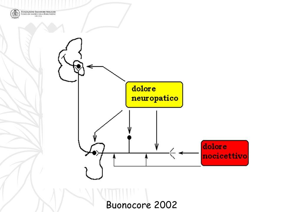 Buonocore 2002