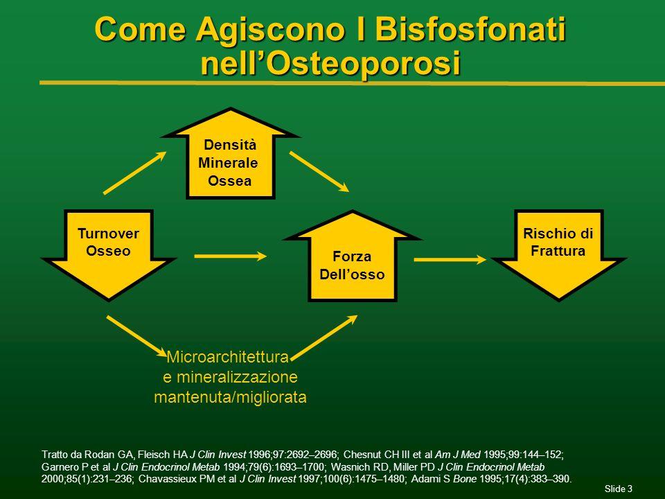 Come Agiscono I Bisfosfonati nell'Osteoporosi