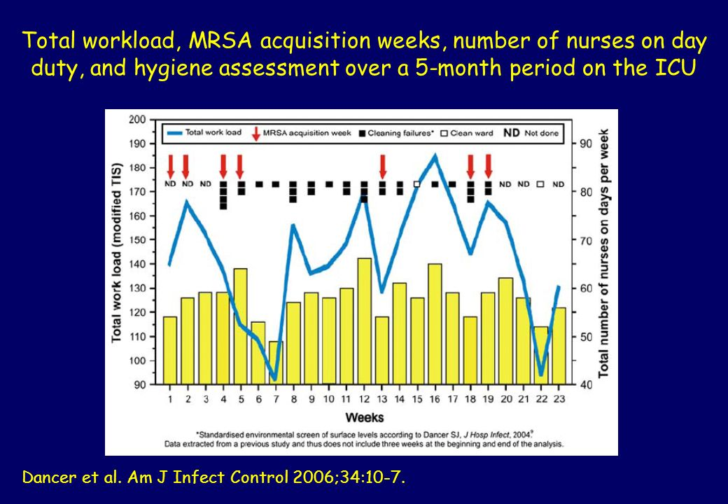 Total workload, MRSA acquisition weeks, number of nurses on day duty, and hygiene assessment over a 5-month period on the ICU