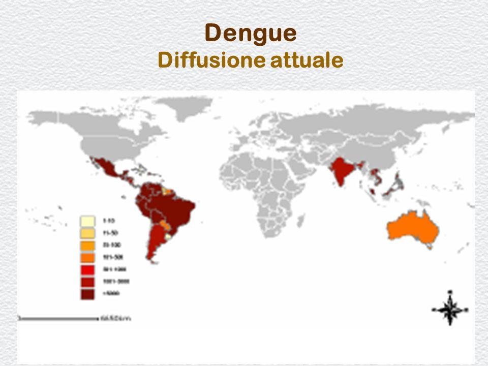 Dengue Diffusione attuale