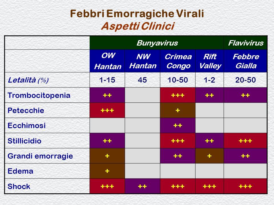 Febbri Emorragiche Virali Aspetti Clinici