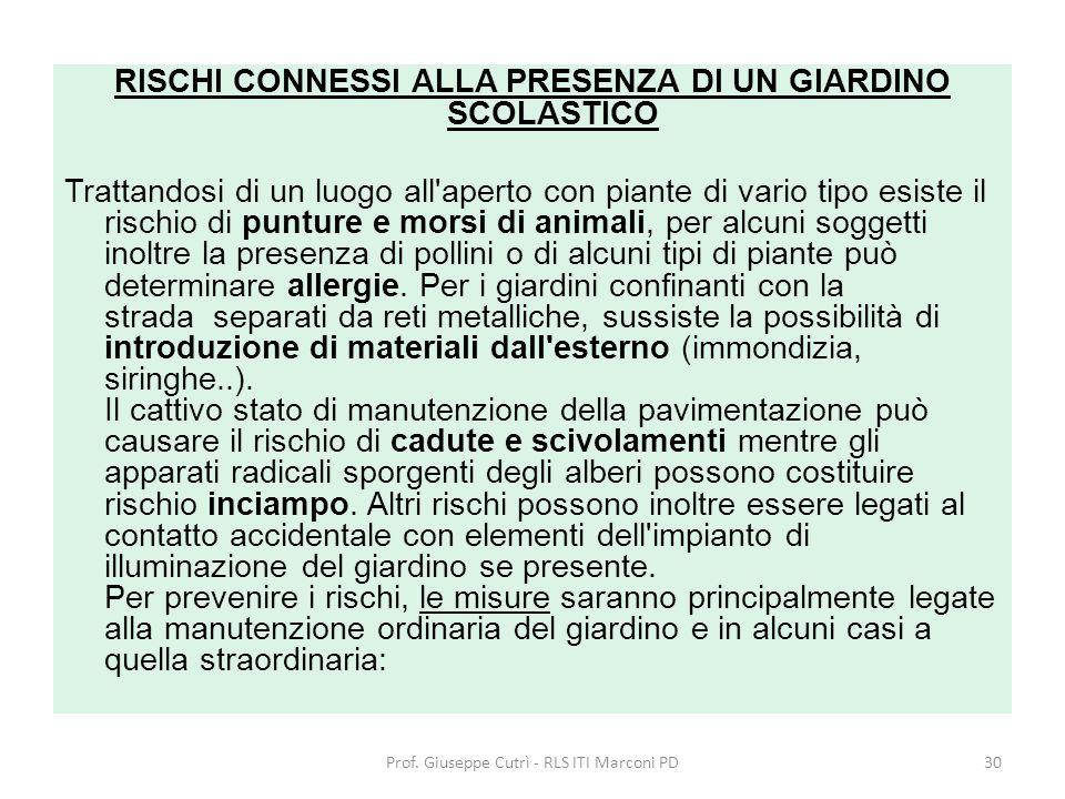 RISCHI CONNESSI ALLA PRESENZA DI UN GIARDINO SCOLASTICO