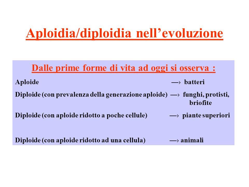 Aploidia/diploidia nell'evoluzione