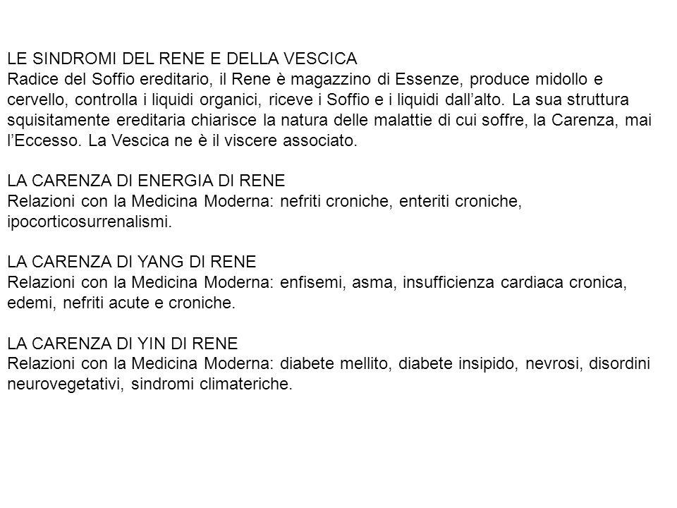 LE SINDROMI DEL RENE E DELLA VESCICA Radice del Soffio ereditario, il Rene è magazzino di Essenze, produce midollo e cervello, controlla i liquidi organici, riceve i Soffio e i liquidi dall'alto.