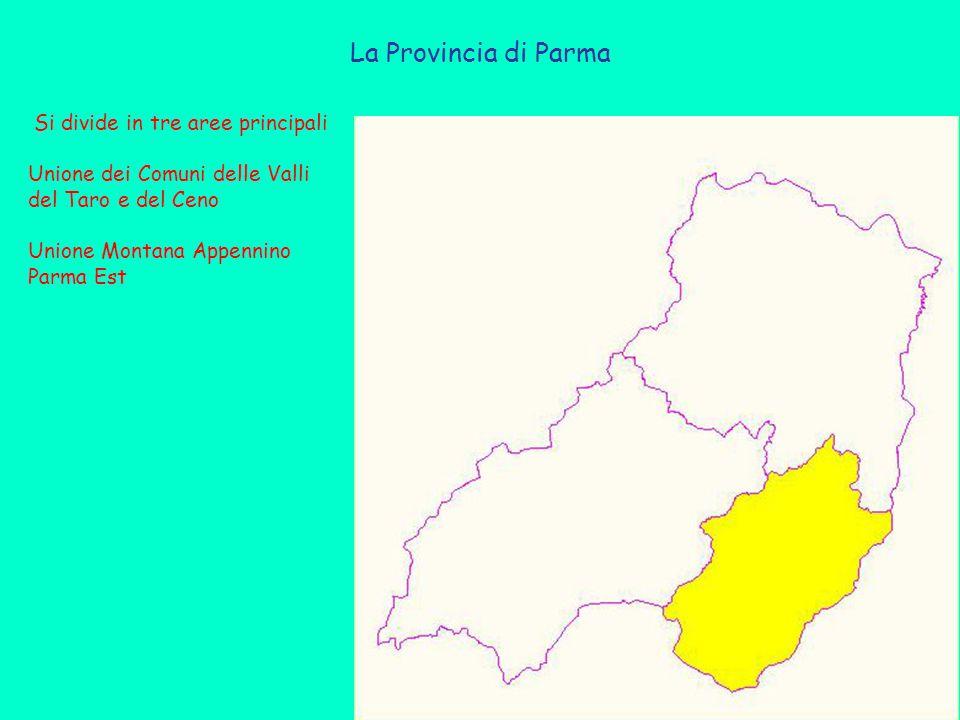 Si divide in tre aree principali