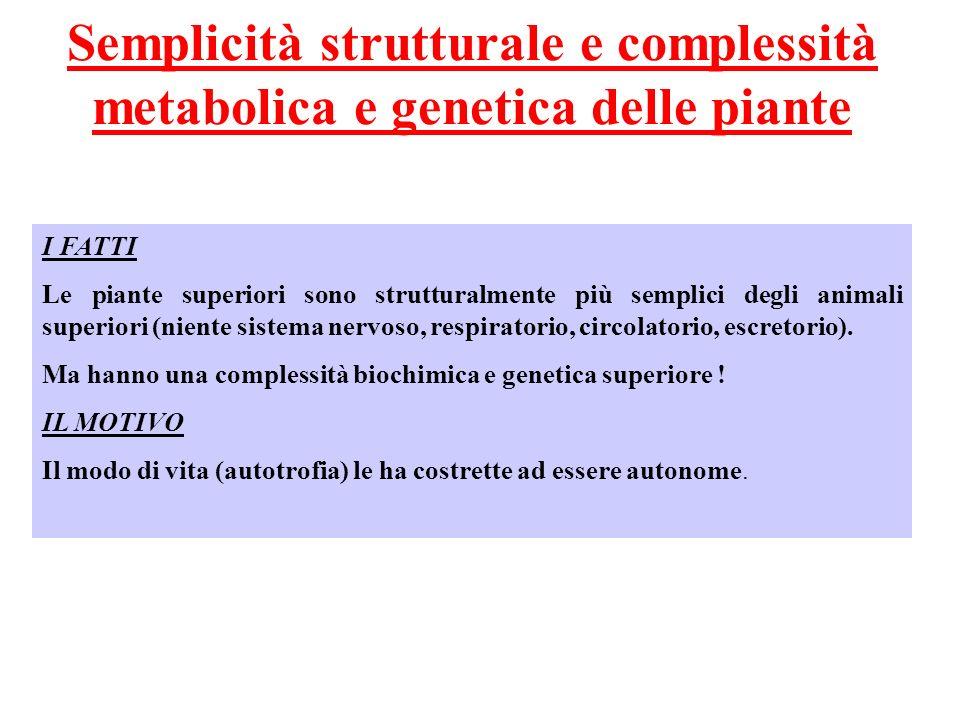 Semplicità strutturale e complessità metabolica e genetica delle piante