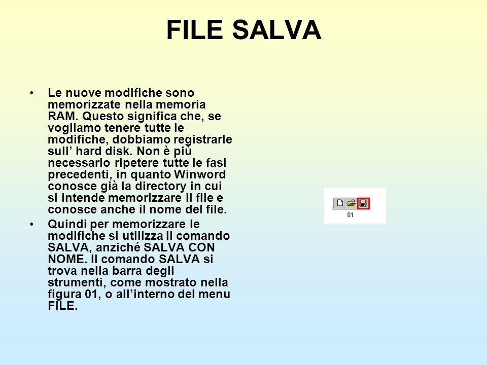 FILE SALVA