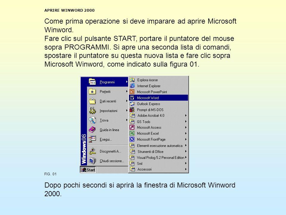 Dopo pochi secondi si aprirà la finestra di Microsoft Winword 2000.