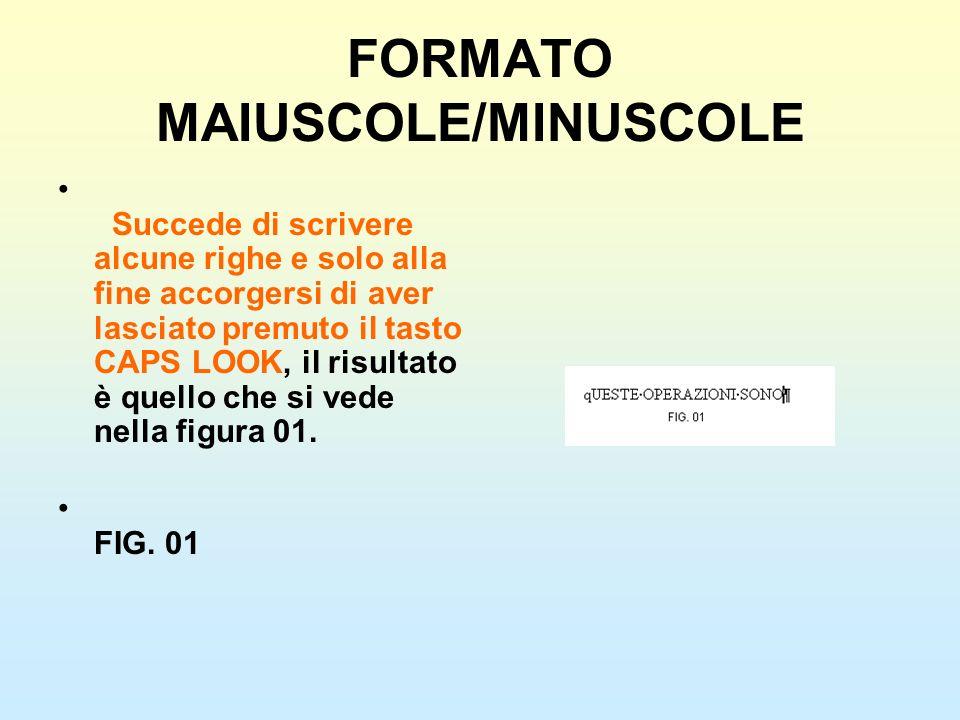 FORMATO MAIUSCOLE/MINUSCOLE