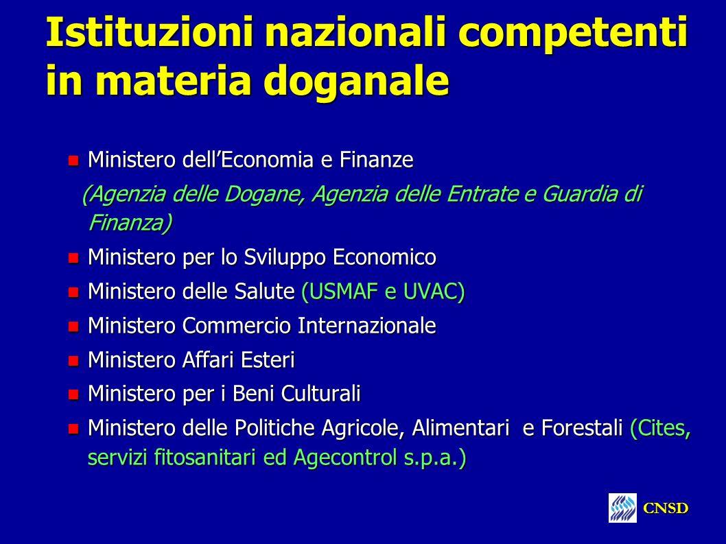 Istituzioni nazionali competenti in materia doganale
