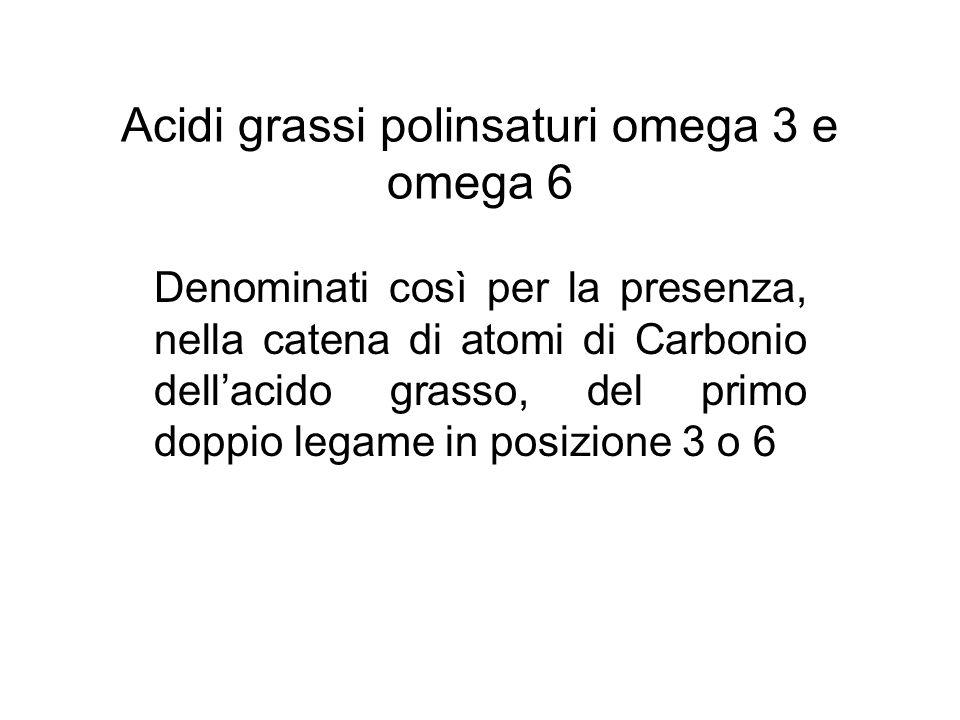 Acidi grassi polinsaturi omega 3 e omega 6
