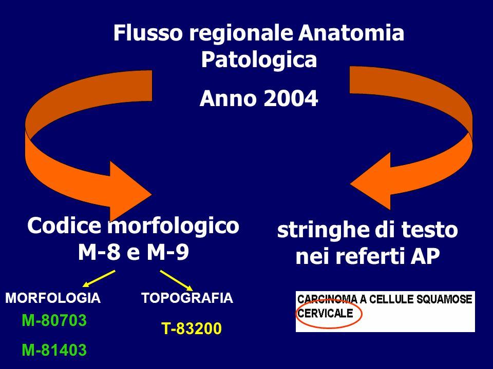 Flusso regionale Anatomia Patologica Anno 2004