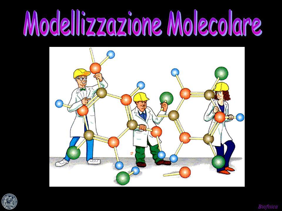 Modellizzazione Molecolare