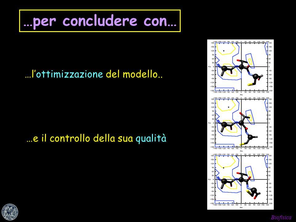 …per concludere con… …l'ottimizzazione del modello..