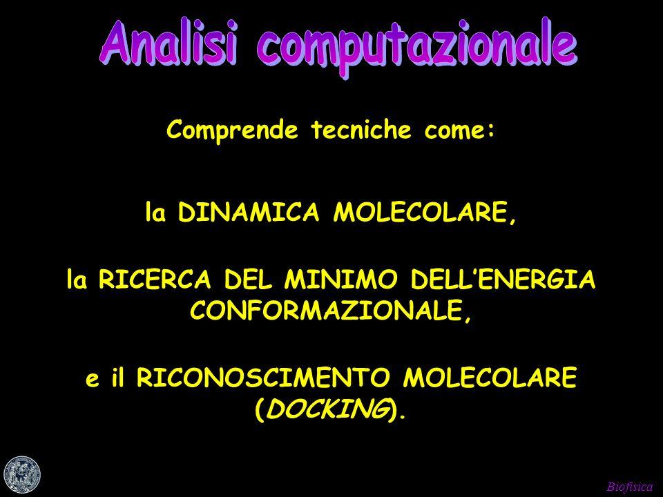 Analisi computazionale