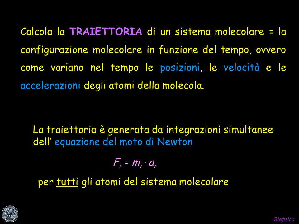 Calcola la TRAIETTORIA di un sistema molecolare = la configurazione molecolare in funzione del tempo, ovvero come variano nel tempo le posizioni, le velocità e le accelerazioni degli atomi della molecola.