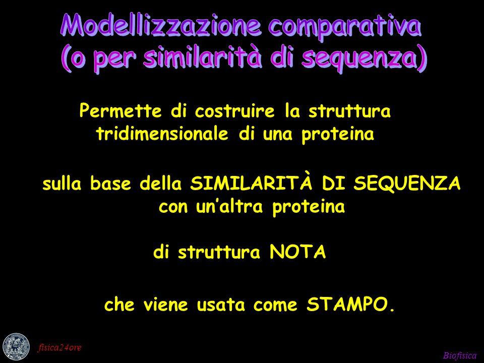 Modellizzazione comparativa (o per similarità di sequenza)
