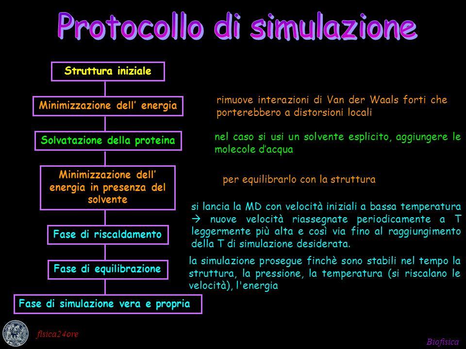 Protocollo di simulazione
