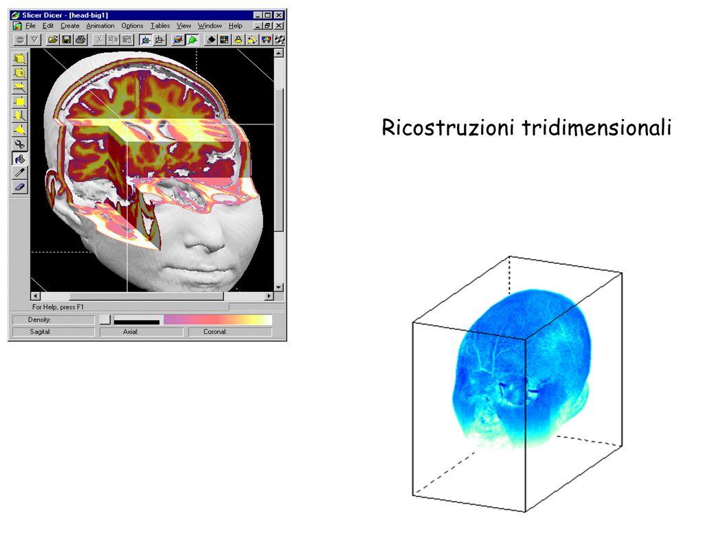 Ricostruzioni tridimensionali