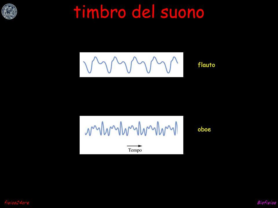 timbro del suono flauto oboe fisica24ore