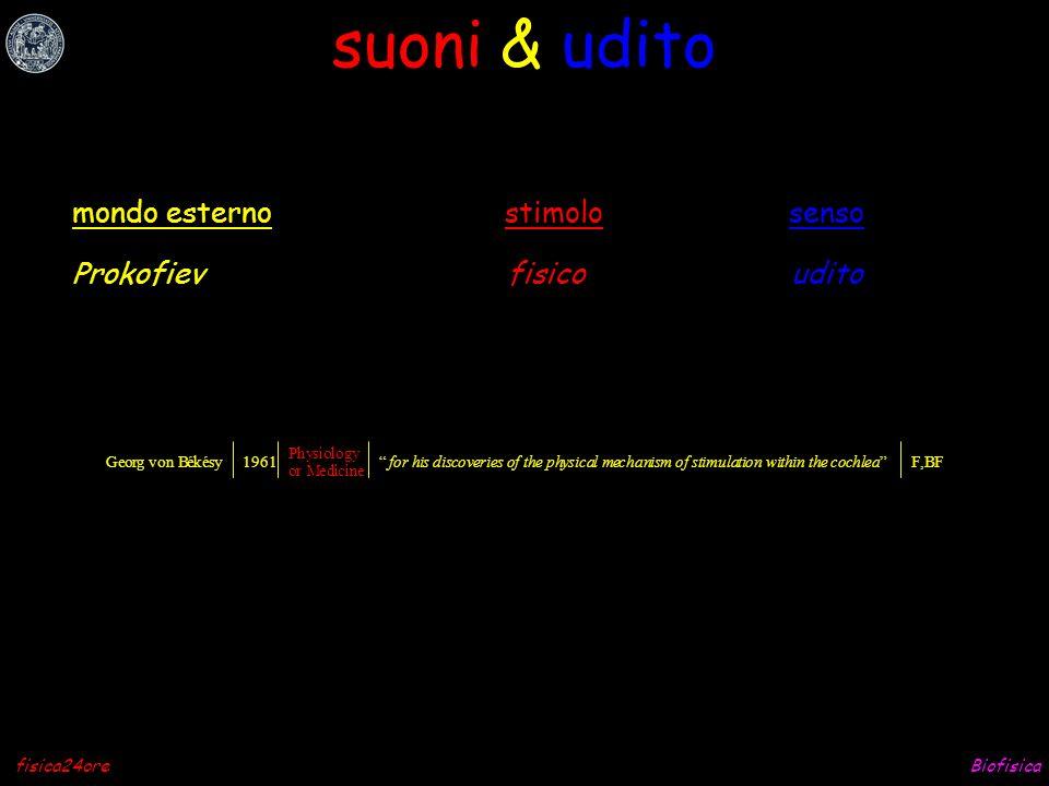 suoni & udito mondo esterno stimolo senso Prokofiev fisico udito