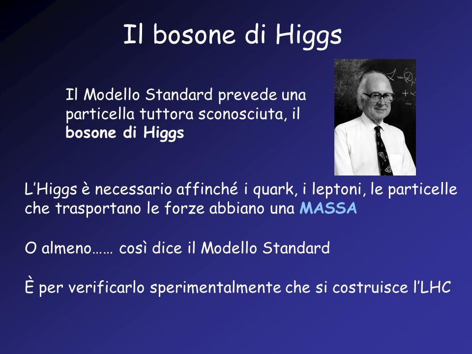 Il bosone di Higgs Il Modello Standard prevede una