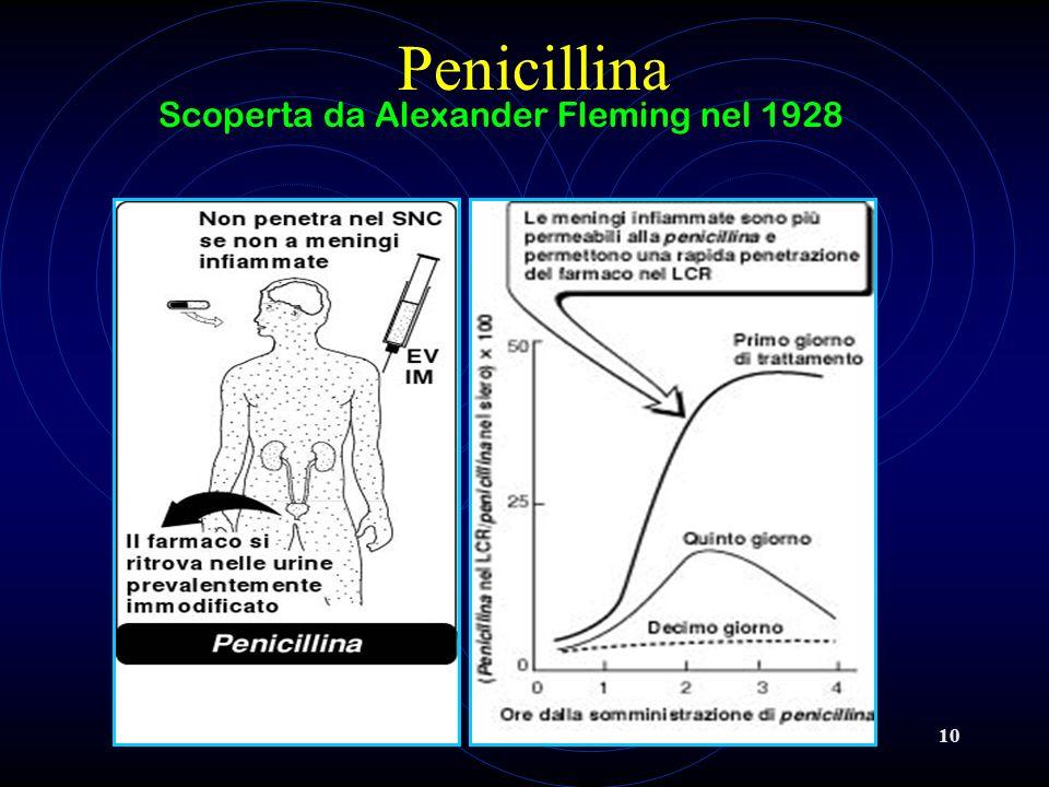 Scoperta da Alexander Fleming nel 1928