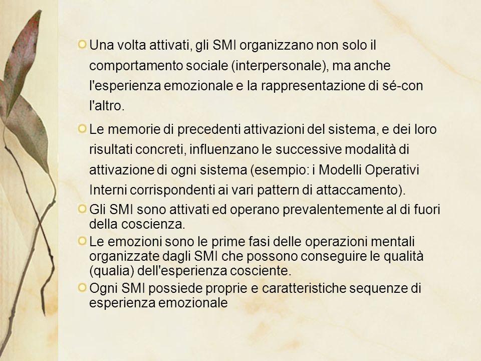 Una volta attivati, gli SMI organizzano non solo il comportamento sociale (interpersonale), ma anche l esperienza emozionale e la rappresentazione di sé-con l altro.