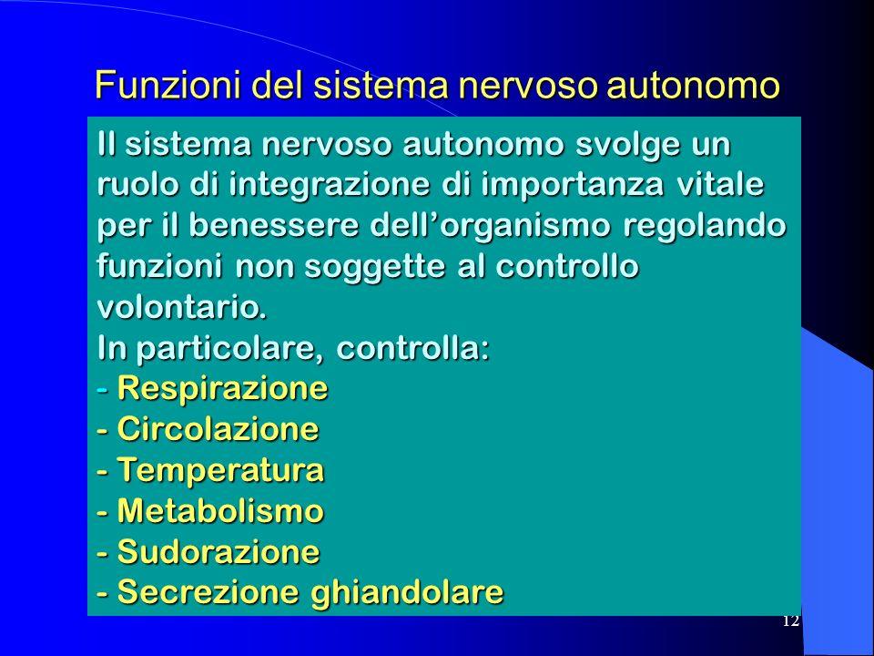 Funzioni del sistema nervoso autonomo